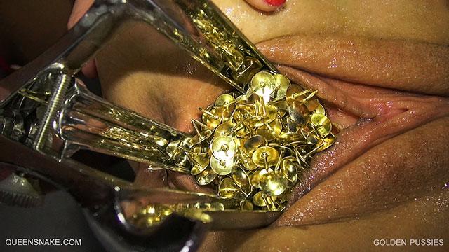 golden pussy pics