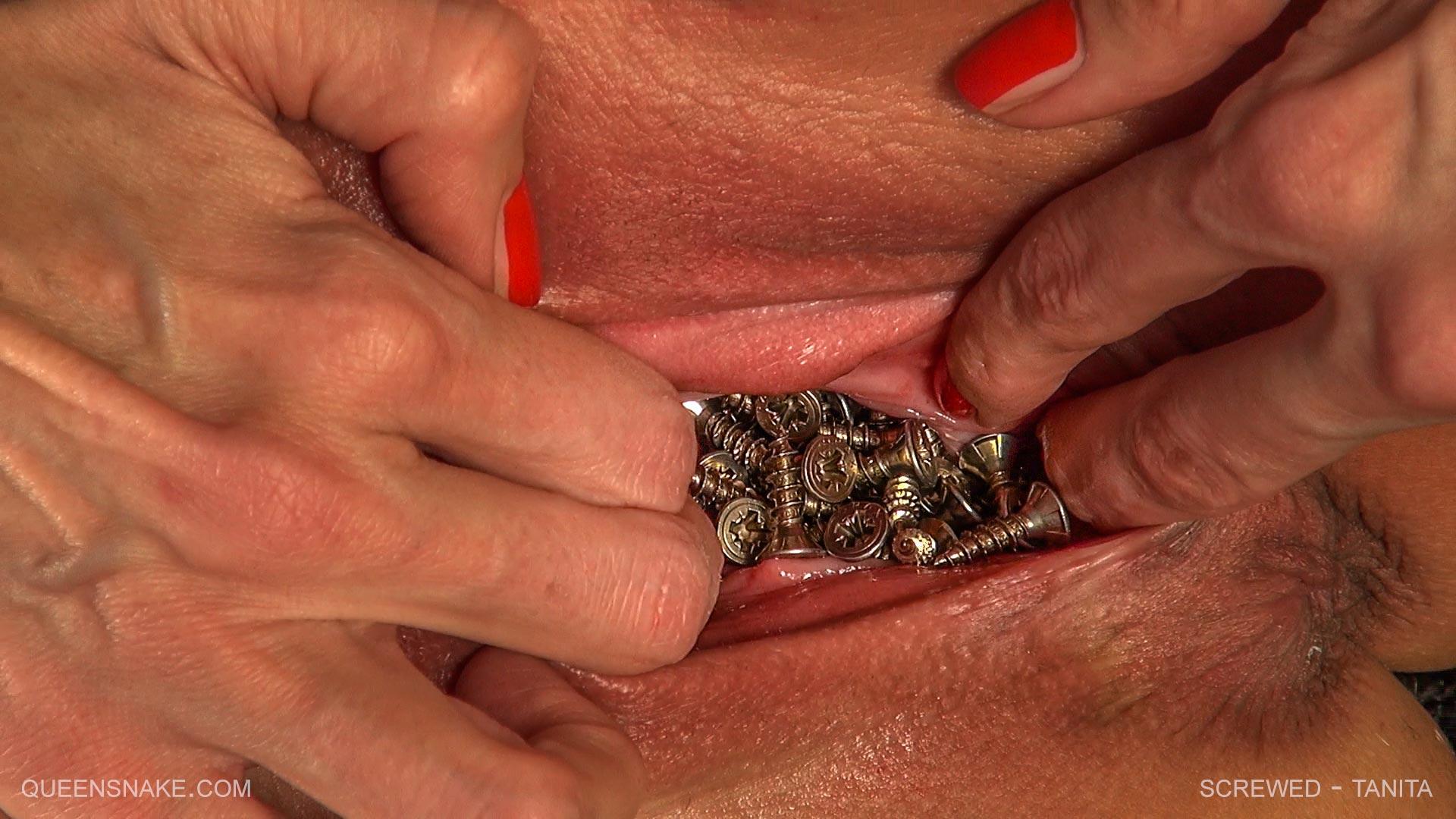sucking nipples in sex